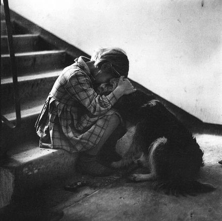 by Mark Steinmetz -- a dog always knows how to be there for you.