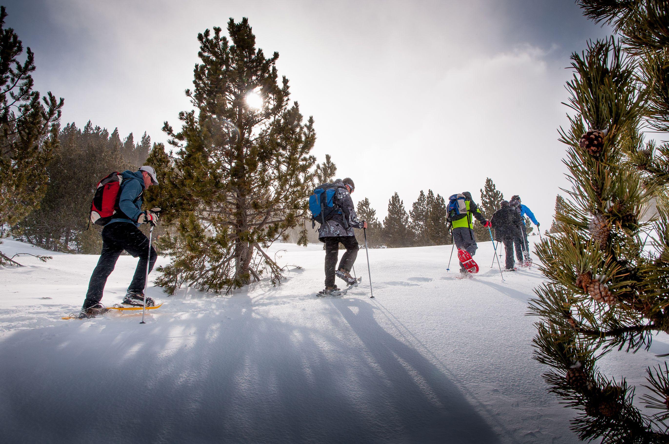 Resultado de imagen de niños andando con raquetas de nieve