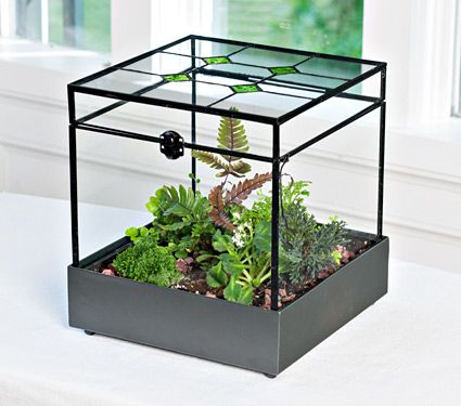 stained glass terrarium kit white flower farm there is. Black Bedroom Furniture Sets. Home Design Ideas