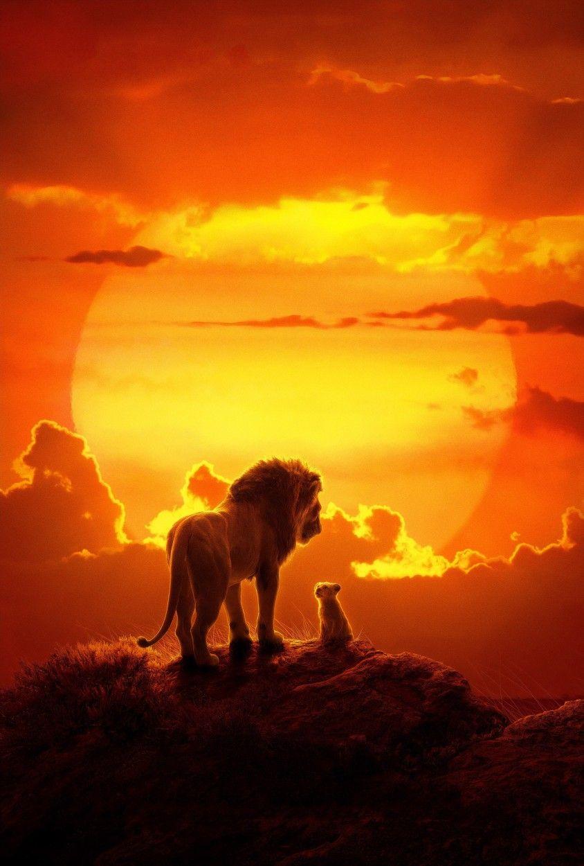 The Lion King Filme O Rei Leao Rei Leao Filme Rei Leao
