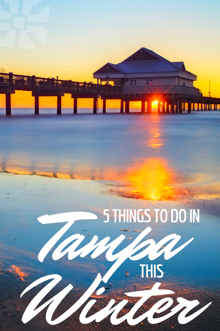 Top 5 Things To Do In Tampa This Winter Florida In December Florida Vacation Spots Florida Vacation