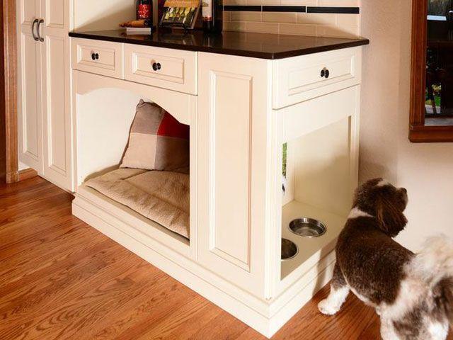 ein hund muss es in seinem bett bequem haben und darin gut schlafen k nnen wer ihm etwas. Black Bedroom Furniture Sets. Home Design Ideas