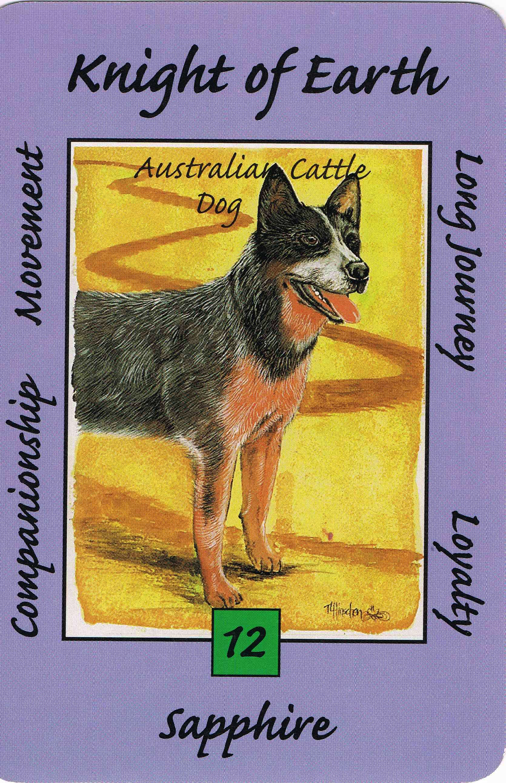 animal tarot cards online
