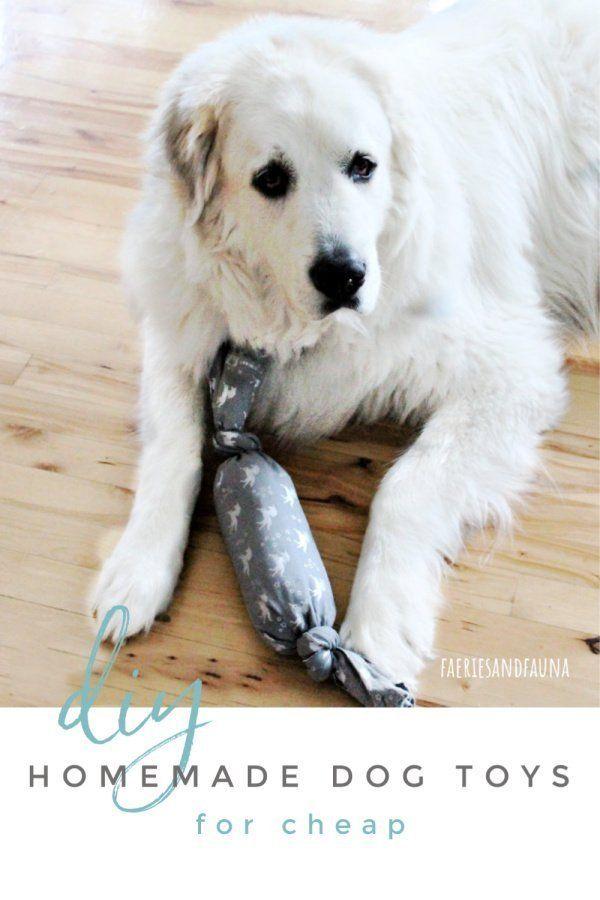 Diy Dog Toys For Cheap Diy Dog Toys Homemade Dog Toys Dog Toys