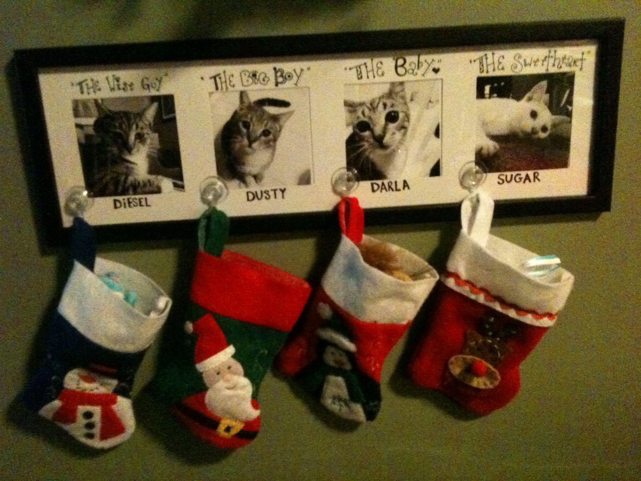 kitty christmas stockings  I did Christmas 2010