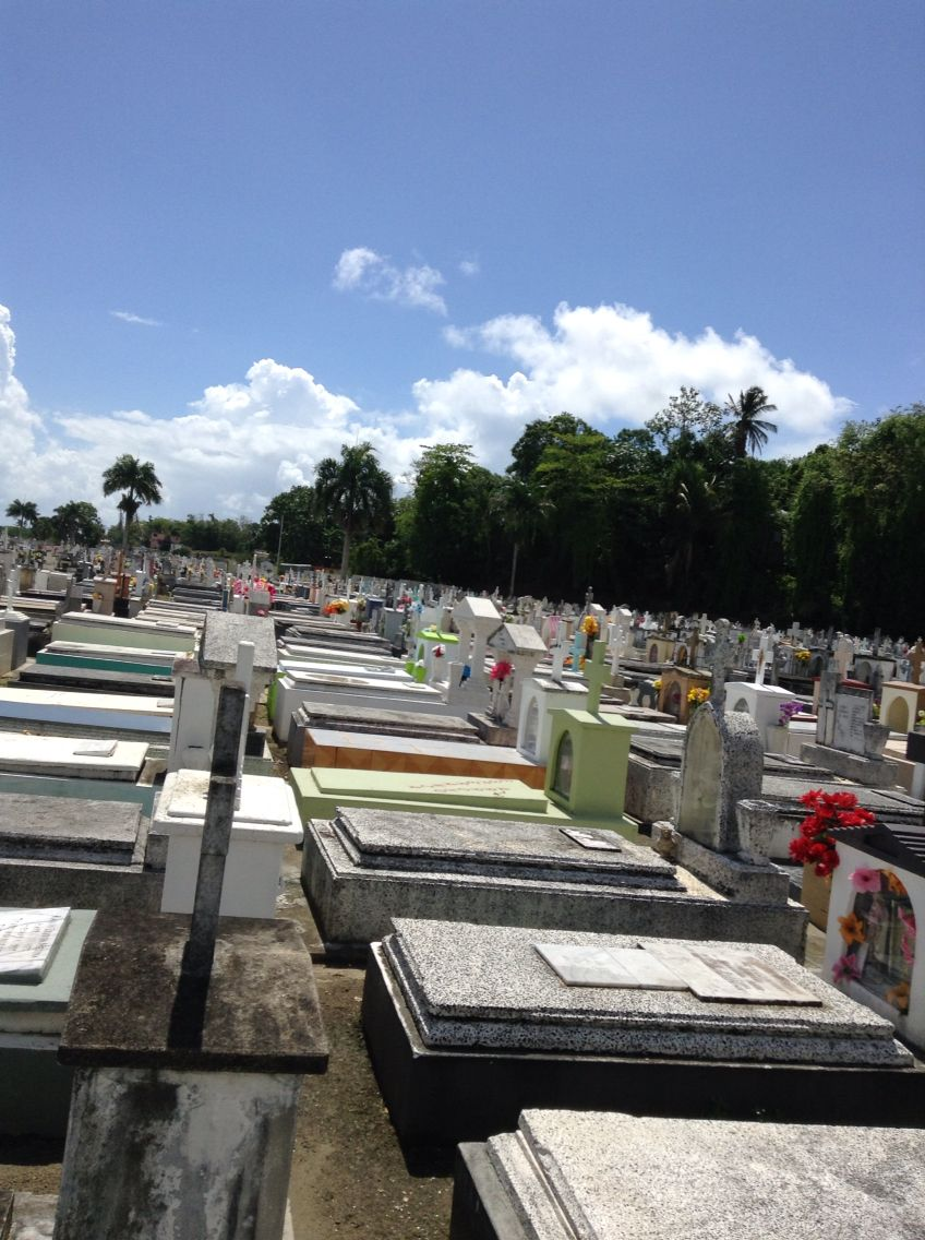 Look at how amazing the cemeteries in