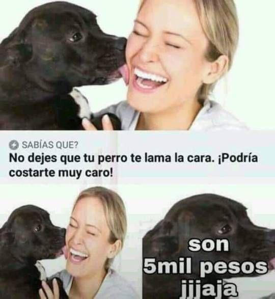 No dejes que tu perro te lama la cara