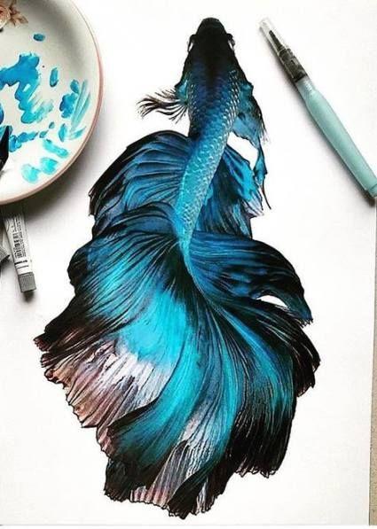 Watercolor art fish beautiful 60+ Ideas