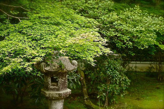 """Toro"" Stone lantern in the garden, Kyoto"