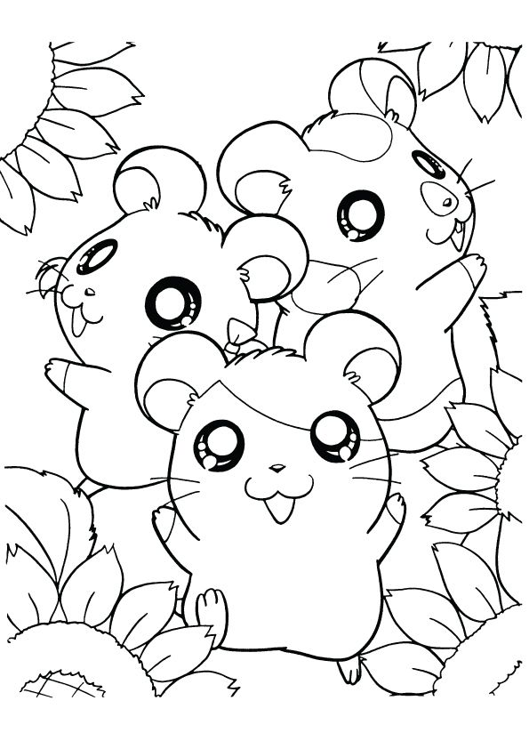 Hamster Coloring Pages Best Coloring Pages For Kids In 2020 Animal Coloring Pages Halloween Coloring Pages Baby Coloring Pages
