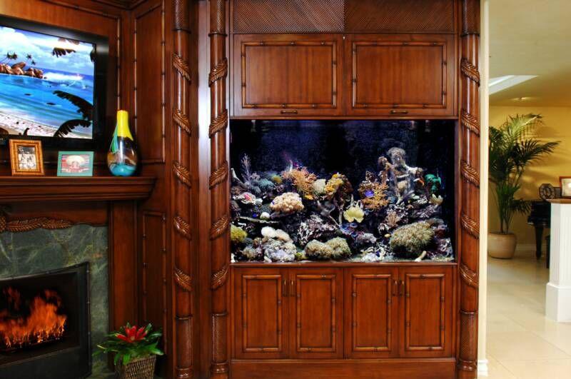 250 Gallon Living Reef Aquarium With Custom Cabinet.