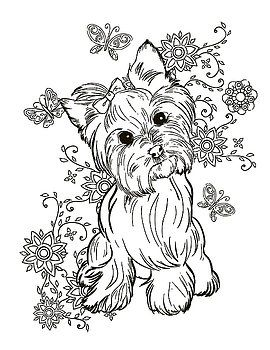 Yorkie Terrier Por Cindy Elsharouni Coloring Pages Animal