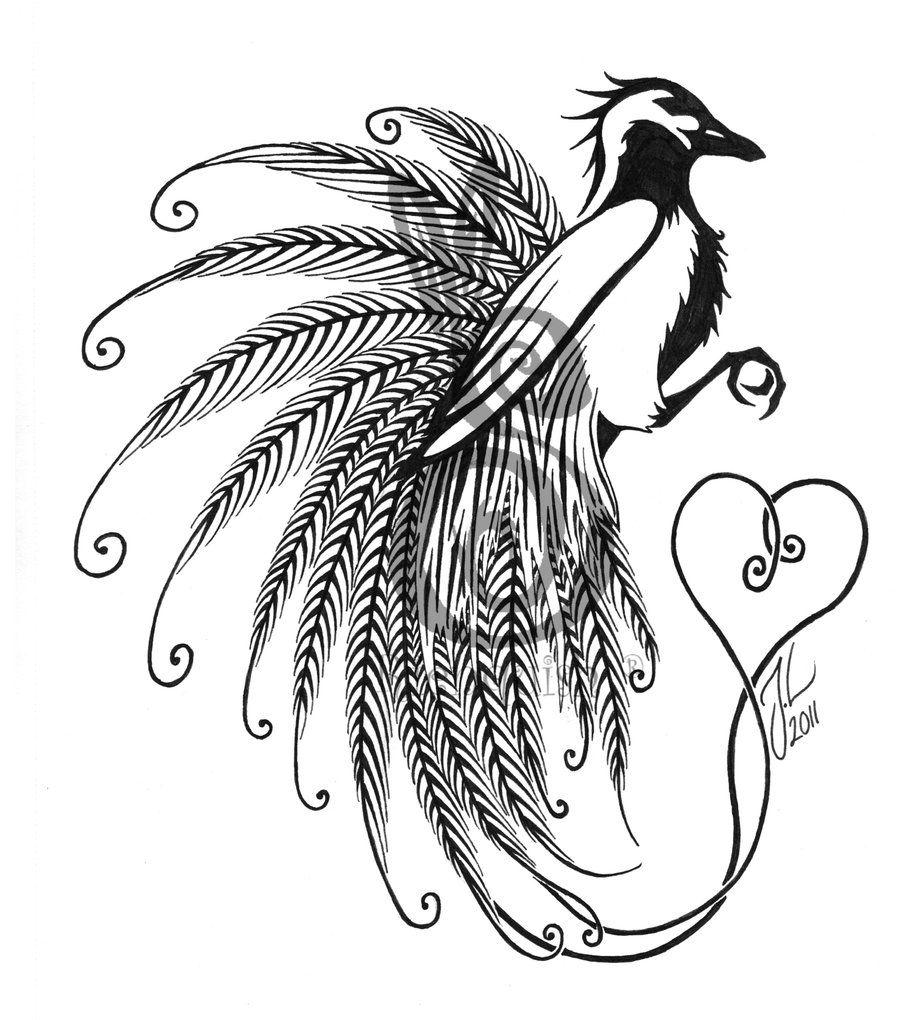 Bird Of Paradise Bird Of Paradise Tattoo Birds Of Paradise Flower Paradise Tattoo