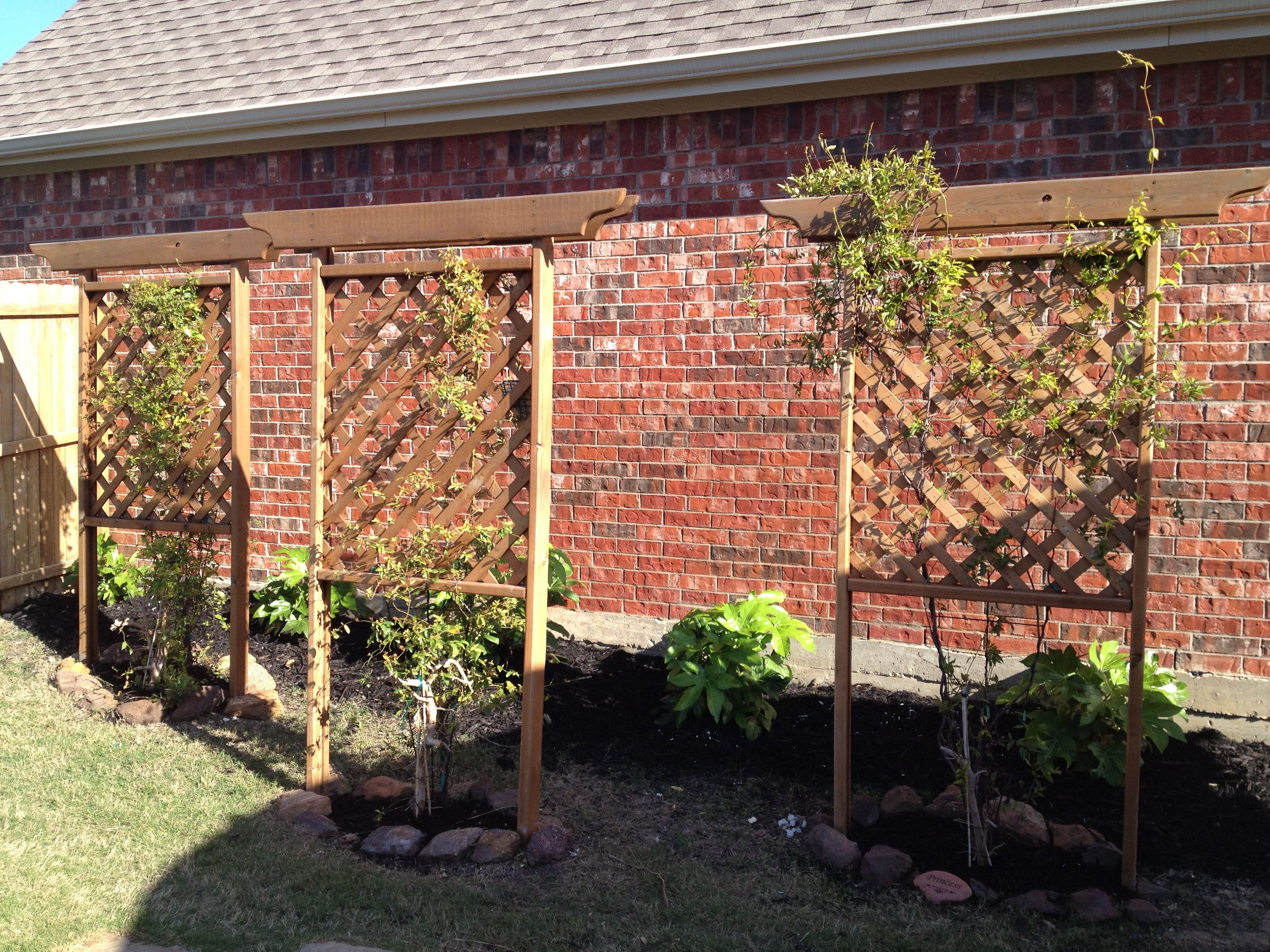 Free Standing Trellis Ideas Part - 16: Hide An Ugly Brick Wall From A Neighboru0027s House Using Some Free-standing  Trellis U0026 Carolina Jasmine. Once That Jasmine Grows In Thick, No More Ugly  Wall!