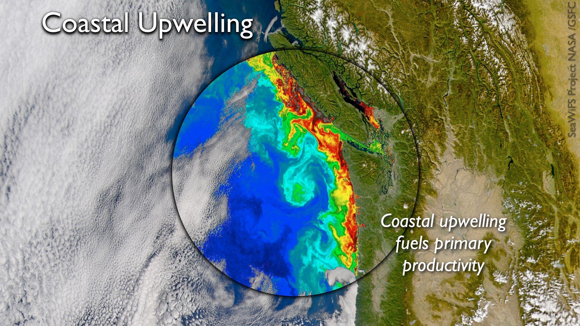 NephiCode: February 2018  Peru Prevailing Winds