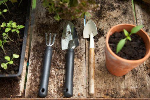 Top 5 Garden Feng Shui Design and Decor Tips Feng shui, Gardens - feng shui garten bagua
