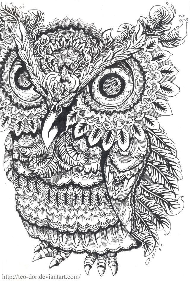Lovely Owl Coloring Pages For Adults