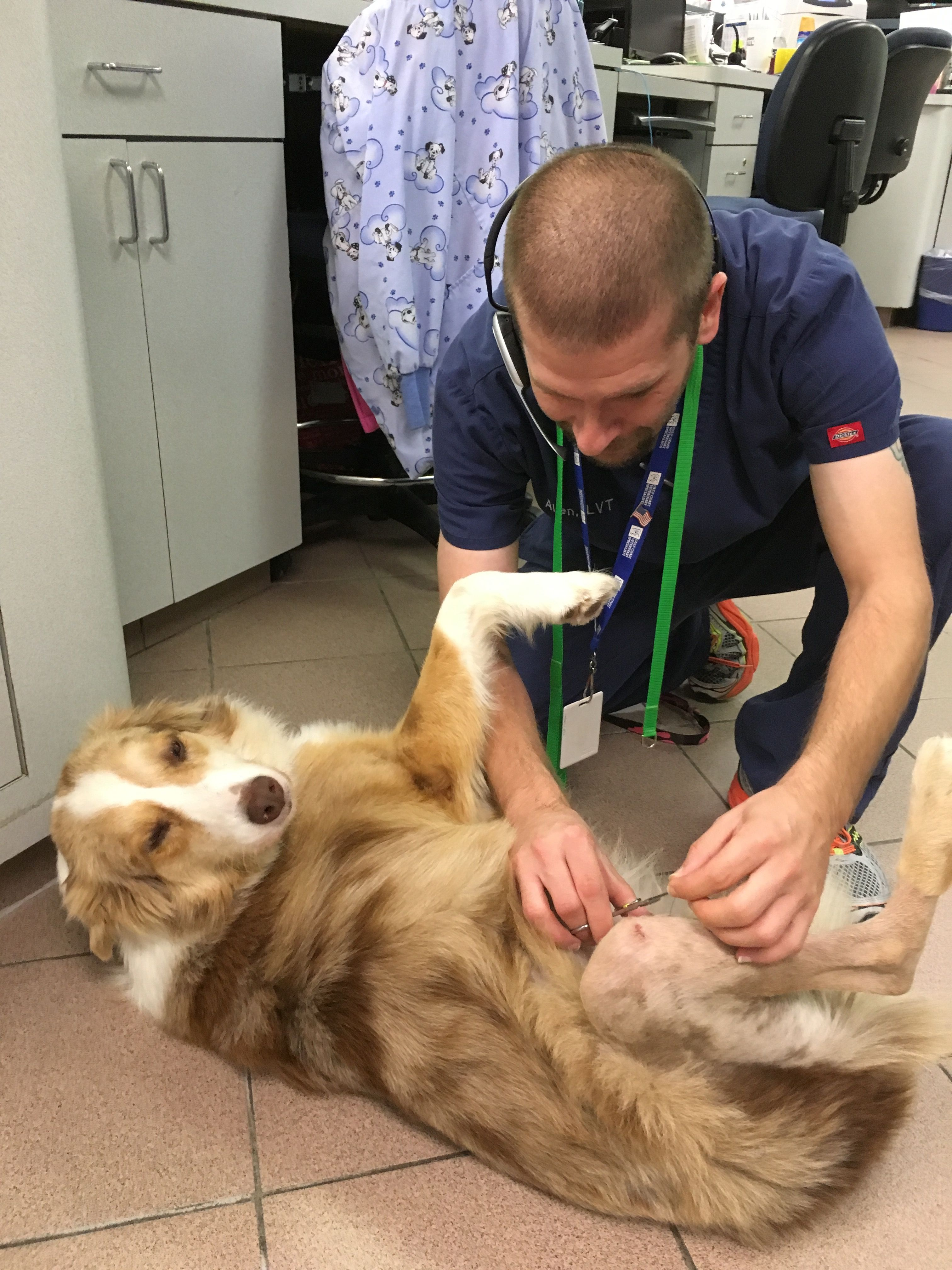 Baxter Says Suture Removal Appointments With Our Orthopedists Are