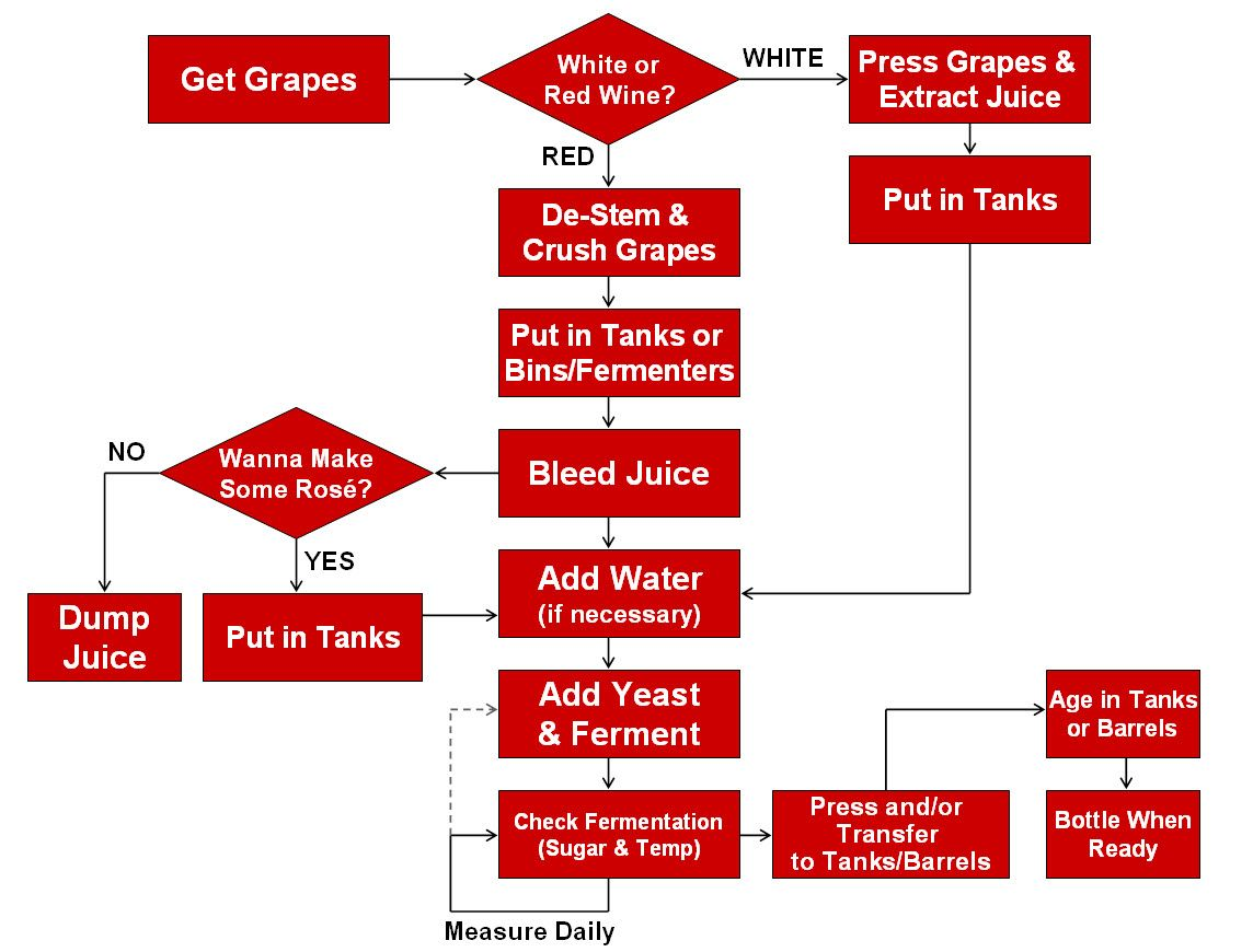 Urban Grapes Of Wrath Handy Flow Chart Wine Making Process Wine Making Wine