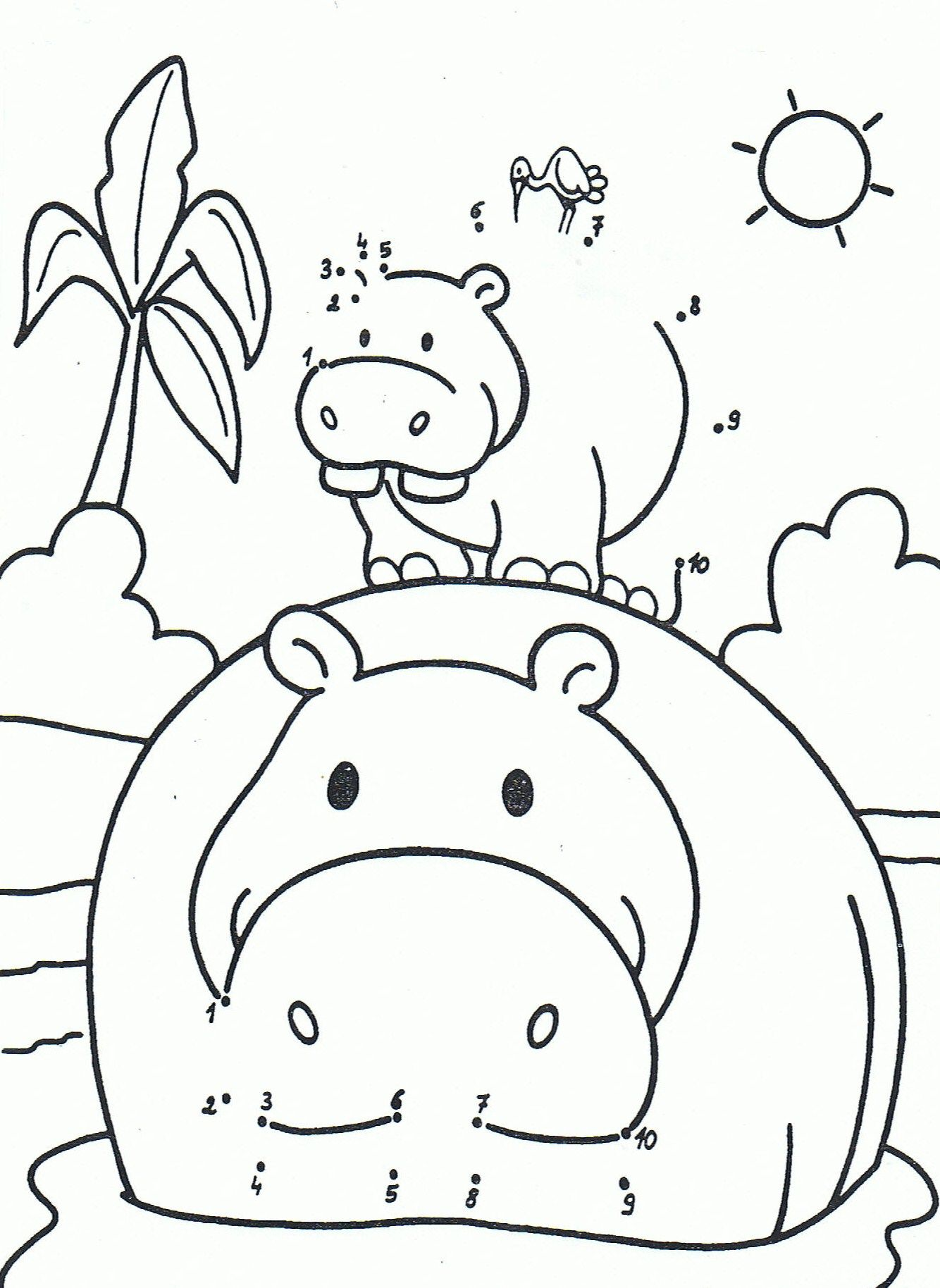 kleurplaat een nijlpaard 1 10 dierentuindieren de