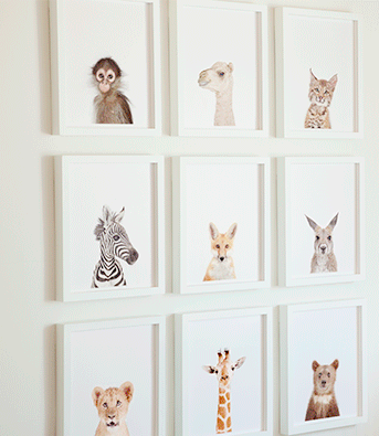 animal prints are from the animal shop by sharon montrose