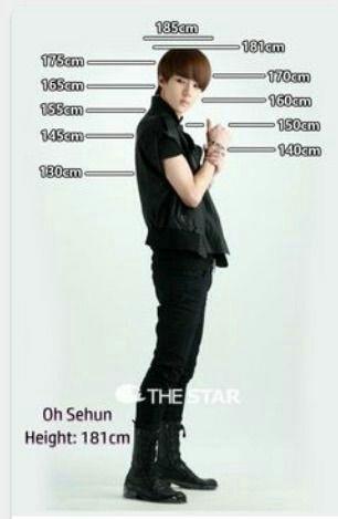 Memes Del Kpop Exo Funny Exo Sehun