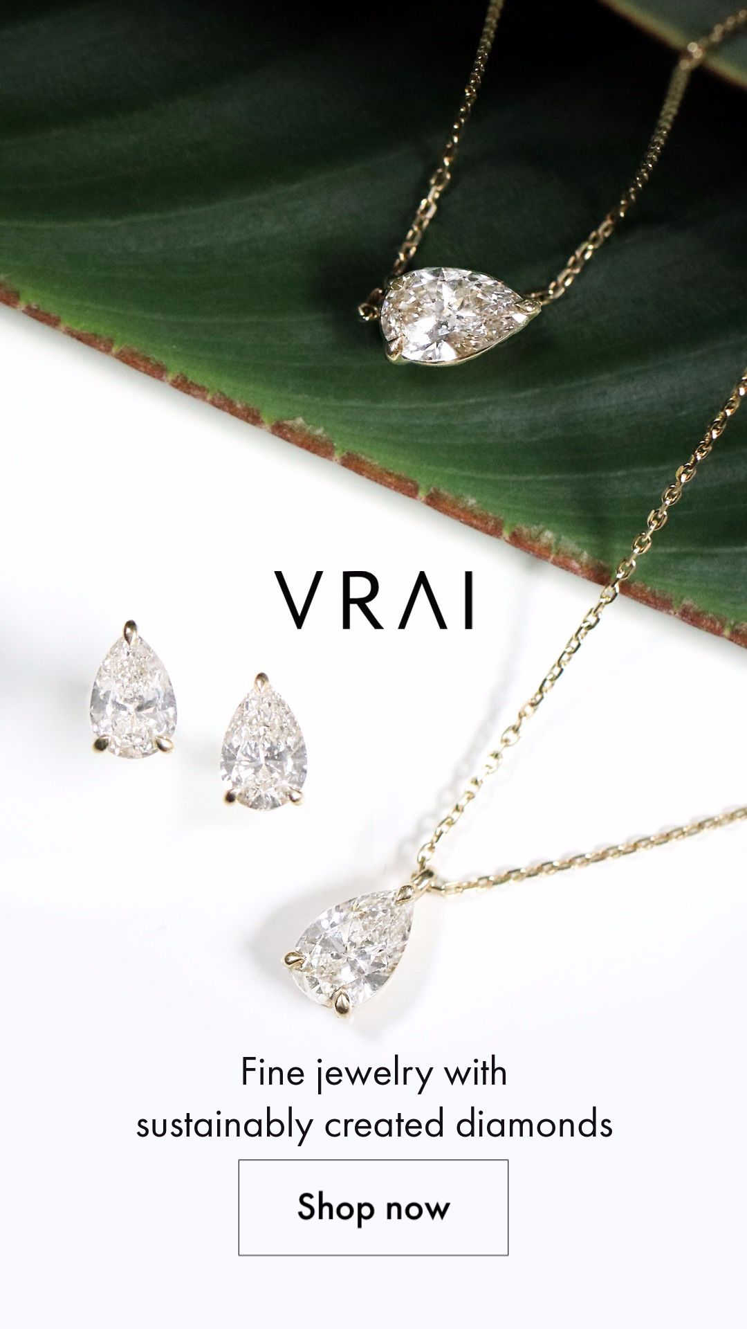 Evolved Jewelry : evolved, jewelry, Jewelry,, Evolved., Dream, Jewelry