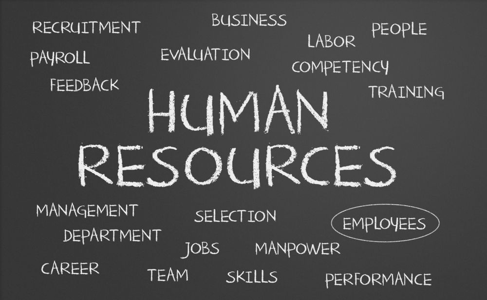 How To Choose A Professional Employer