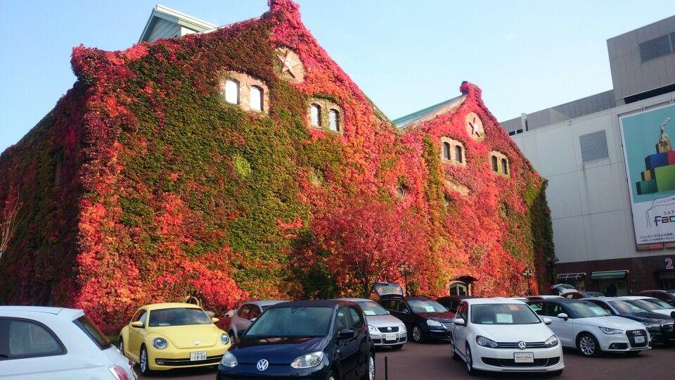 ファクトリーホールにてイベント風景 車と紅葉