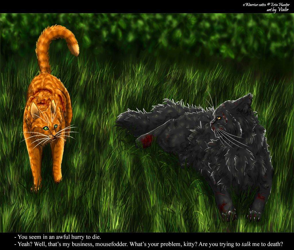 Firepaw And Yellowfang By Vialir.deviantart.com On
