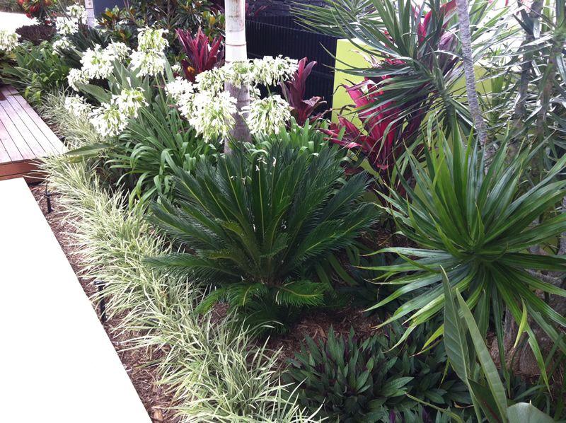 Coastal Gardens Landscape Solutions Gold Coast Landscaping Coastal Gardens Elegant Coastal Decor Coastal Decor