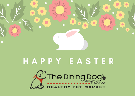 Happy Easter From Us At The Dining Dog Pet Market Healthy Pets Happy Easter