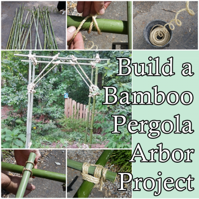 The Homestead Survival | Build a Bamboo Pergola Arbor Project | Gardening & Homesteading http://thehomesteadsurvival.com