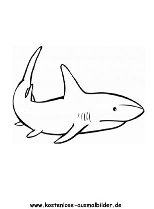 Ausmalbild Hai In 2020 Ausmalen Ausdrucken Ausmalbild