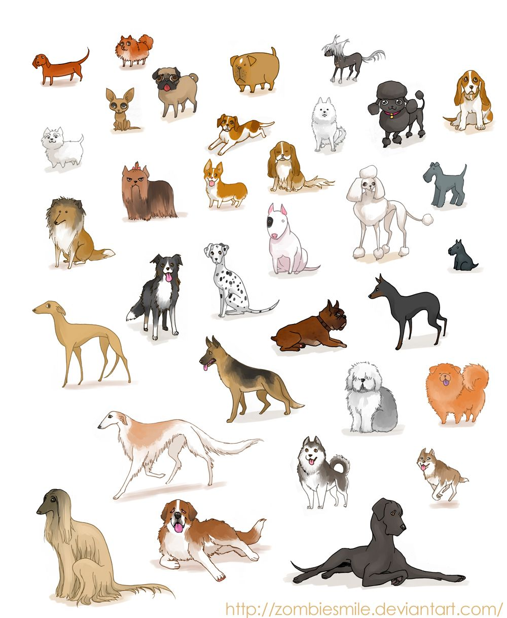 A ton of dogs by zombiesmile on deviantart tutorials and for What type of dog is this