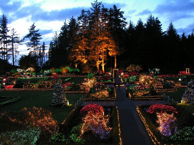 Navigate the Holiday Lights at Shore Acres Like a Pro