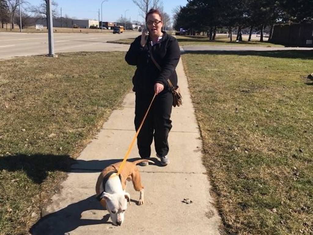 Ross Medical in Taylor Helps Out at Taylor Animal Shelter