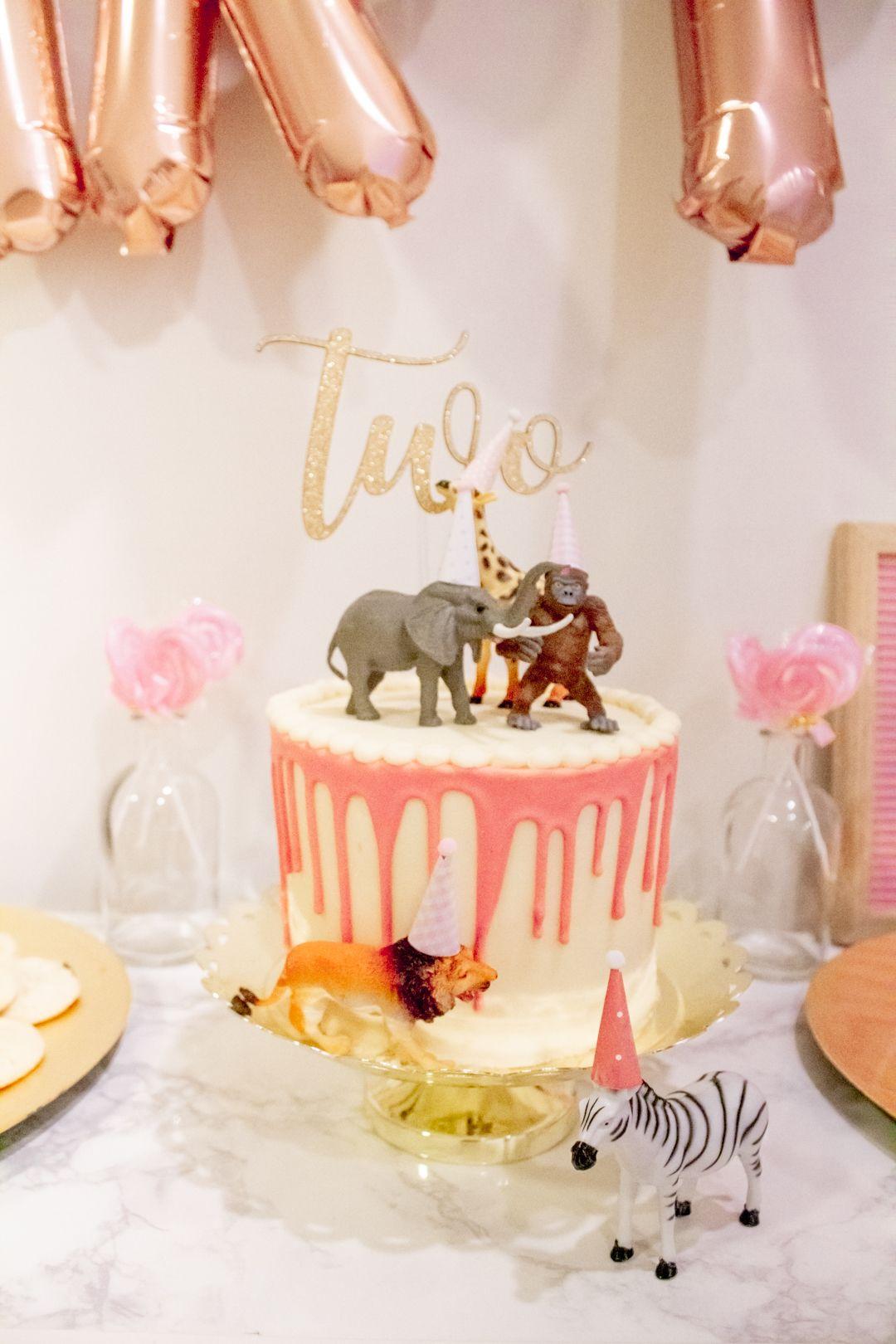 Animal partea for everleys 2nd birthday 2nd birthday