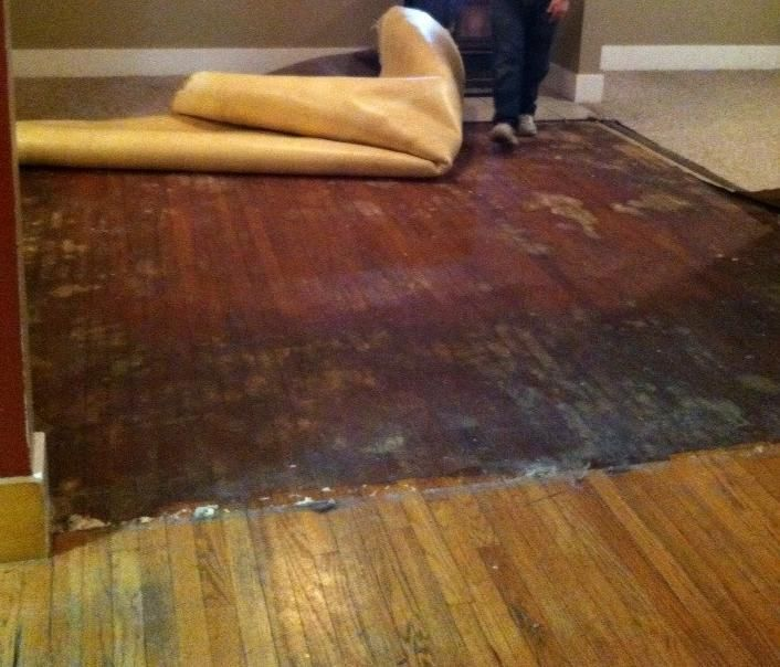 Awesome How To Remove Construction Glue From Hardwood Floors And Review Carpet Glue Removing Carpet Carpet Adhesive