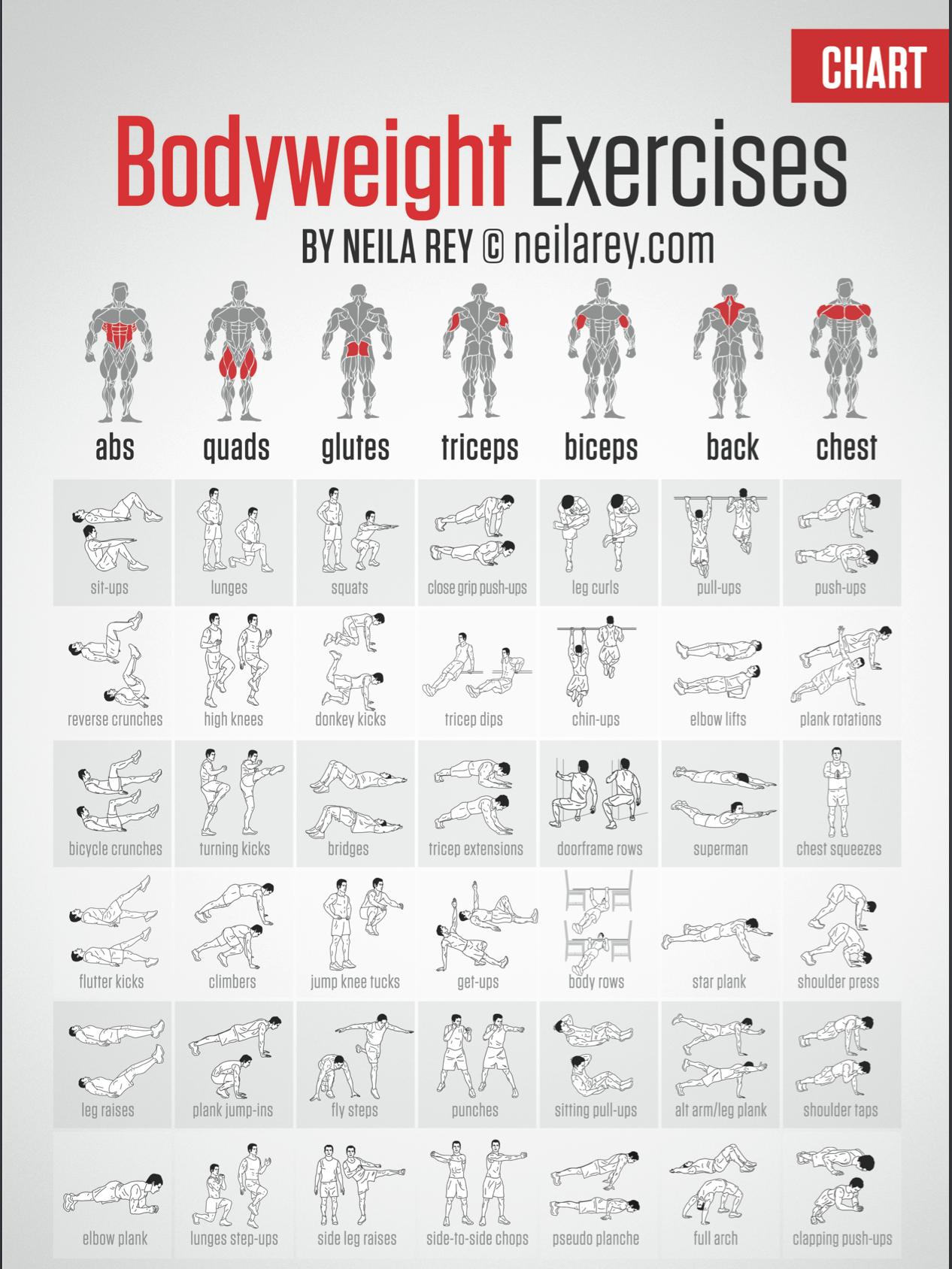 Body Weight Training Buscar Con Google Ejercicios Abdominales