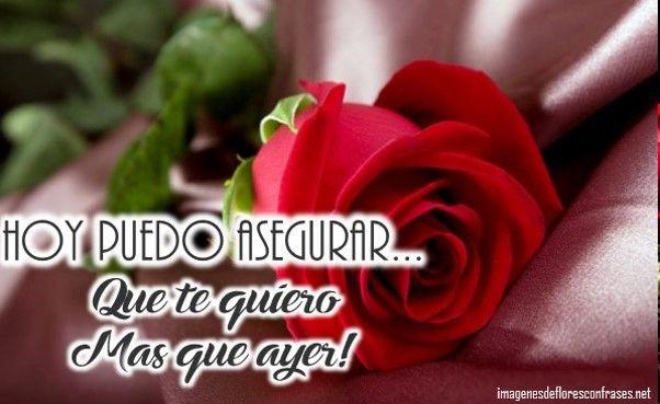 Imagenes De Rosas Para Descargar Gratis Descargas Gratis Pinterest