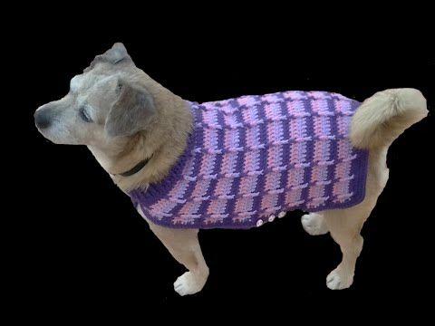 Pin Em Ropa De Mascotas
