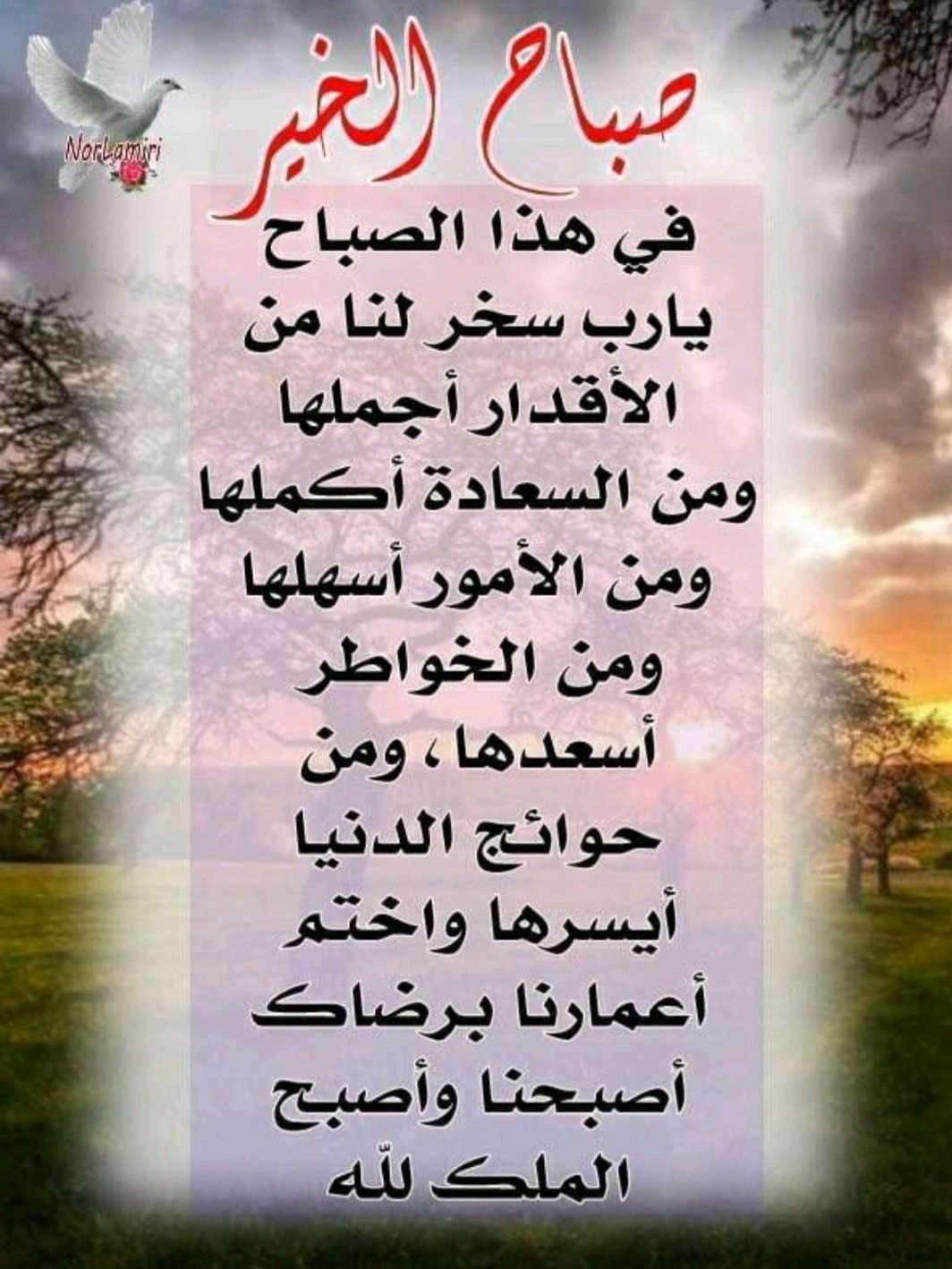Pin By حيدر علي On دعاء و ذكر Book Cover Books Cover