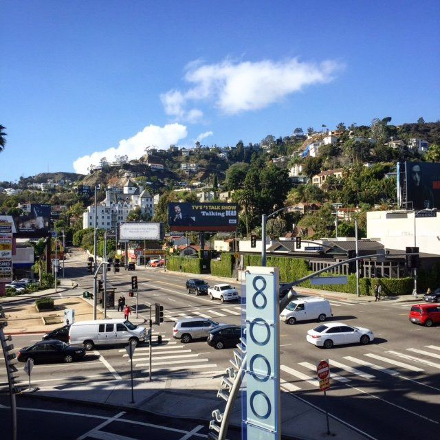 Another beautiful December weather day in the Hollywood
