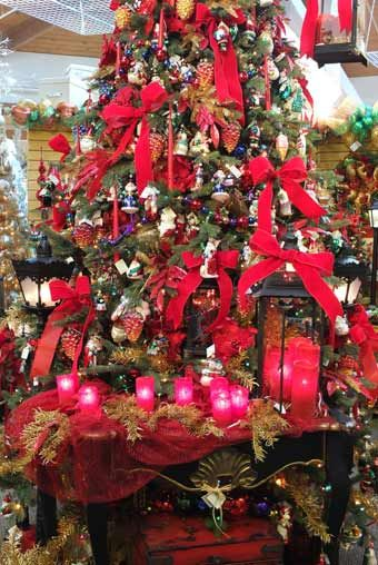 Wights Nursery In Lynnwood Wa I Grew Up Loving To Visit Here Every November Anion Of Christmas