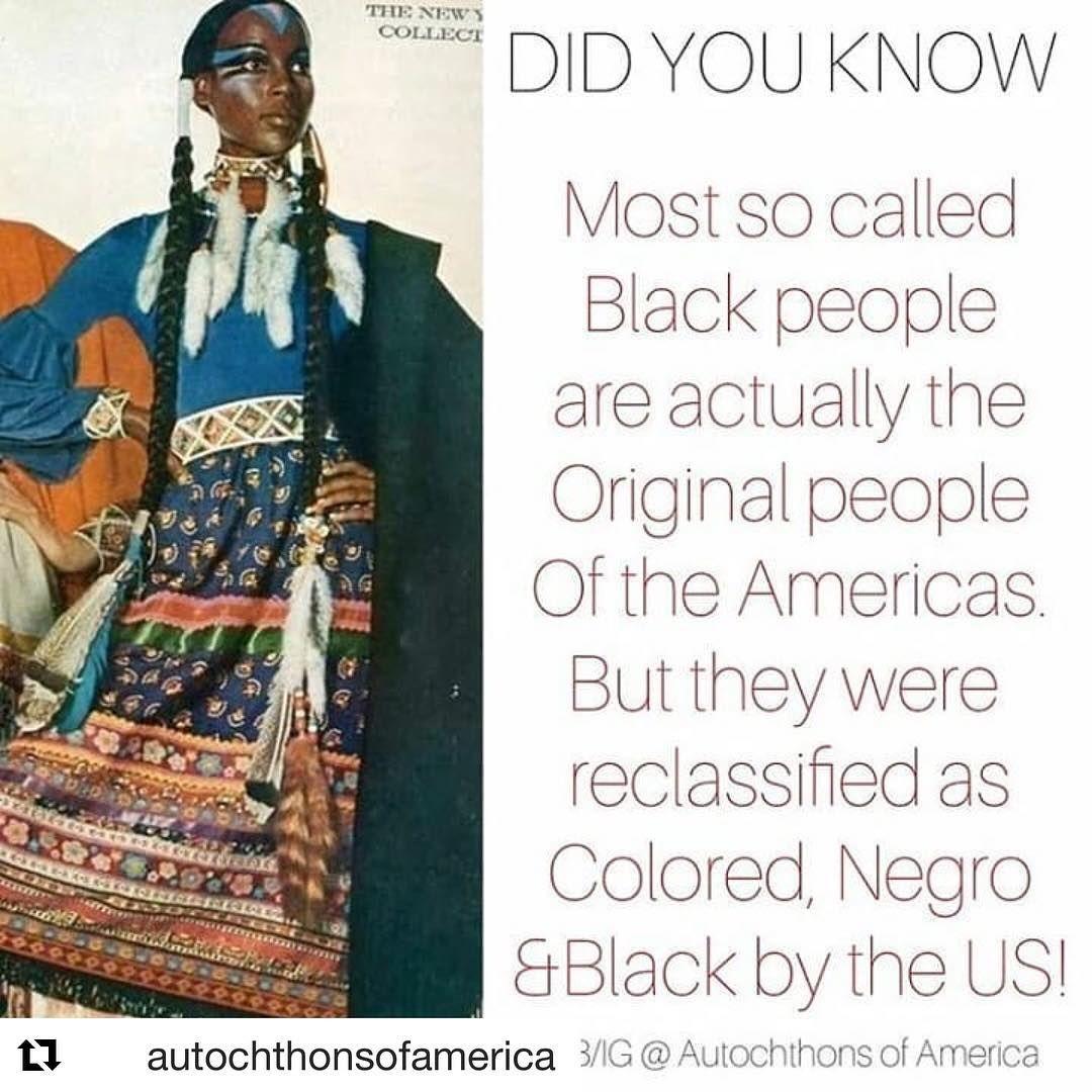 "🧡Tha Coppa Colored Niiji🧡 on Instagram: ""Genealogy search"
