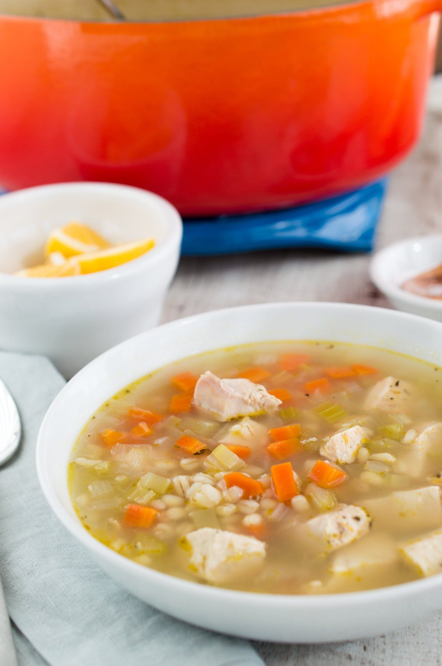 Chicken and Barley Soup Recipe Barley soup, Soup