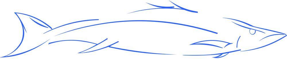 Abstract Snook Fish - Original is a vector