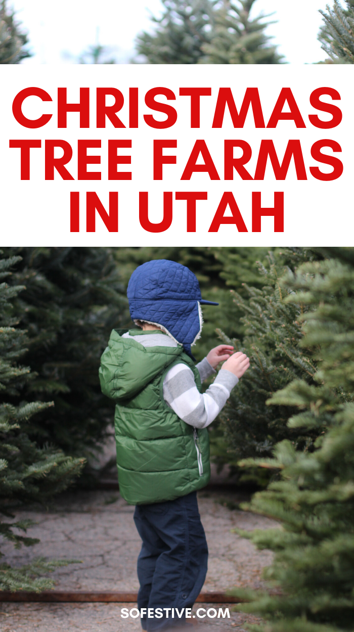 The Ultimate List Of Utah Christmas Activities 2019 Christmas Tree Farm Christmas Activities Tree Farms