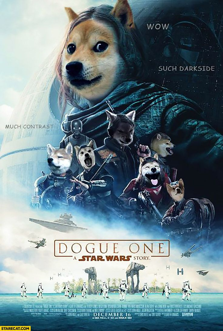 Dogue One Rogue One Doge Star Wars Poster Photoshopped Star Wars Humor Star Wars War Stories
